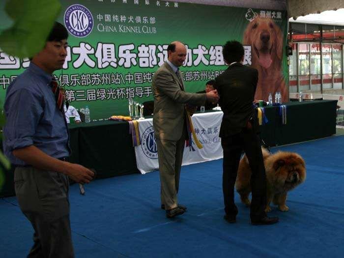 09.5.10日第三届苏州国际名犬展小现金获松狮犬冠军BOB非运动组冠军BIG